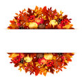 Banner With Autumn Leaves. Vector Eps-10. Royalty Free Stock Image - 44824666