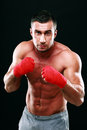 Portrait Of Muscular Male Boxer In Stance Royalty Free Stock Photo - 44831305