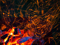 Burning Wood And Coal Royalty Free Stock Photography - 44849107