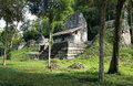 Temple Ruins In Tikal National Park, Guatemala Stock Photo - 44861480