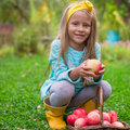 Little Cute Girl With Basket Of Apples In Autumn Royalty Free Stock Images - 44863109