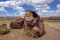 Petrified Logs-Petrified Forest National Park Royalty Free Stock Photography - 44865387