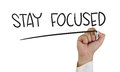 Stay Focused Royalty Free Stock Photo - 44895295