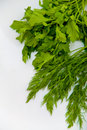 Dill And Parsley Royalty Free Stock Photos - 4496268