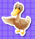 Duck Royalty Free Stock Photos - 44942258
