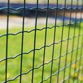 Green Field Behind The Fence Stock Photos - 44980383