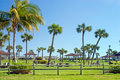 Tropical Park Royalty Free Stock Image - 454216
