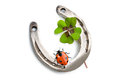 Horseshoes And Clover With Four Leaf Stock Image - 45000451