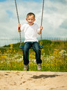 Little Blonde Boy Child Having Fun On A Swing Outdoor Stock Image - 45003471