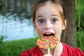 Lollipop Stock Image - 45008901