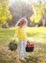 Child Holding Basket With Apples Walking In Autumn Royalty Free Stock Images - 45015939