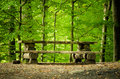 Picnic Table Royalty Free Stock Images - 45019109