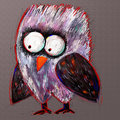 Doodle Crazy Owl, Digital Painting Illustration Royalty Free Stock Photo - 45034725