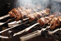 Fresh Meat On A Steel Skewer In A Brazier Royalty Free Stock Photos - 45041268