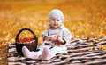 Autumn Portrait Child And Basket With Rowan Berry Stock Image - 45043461