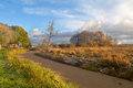 Gold Autumn Morning On River Royalty Free Stock Image - 45088406