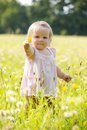 Child At Dandelion Meadow In Summer Royalty Free Stock Image - 45103176