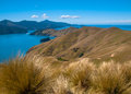 French Pass At Marlborough Sounds, South Island, New Zealand Royalty Free Stock Photography - 45117717