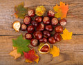 Autumn Background Whith Chestnut And Maple Leaf Royalty Free Stock Image - 45120386