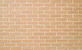 Brick Wall Texture Background Royalty Free Stock Photography - 45202577