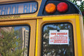 School Bus Stock Image - 45220671