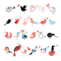 Bright Set Of Birds Stock Photos - 45232953