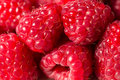 Fresh Raspberries Background Royalty Free Stock Images - 45274969