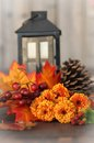 Fall Flowers Royalty Free Stock Photo - 45319575