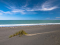 Dune In Black Sand Beach Near New Plymouth, New Zealand Stock Image - 45345641