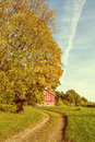 Country Road Passing Autumn Colored Tree Vintage Effects Stock Image - 45352751