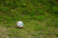 Sport. Old Dirty Soccer Ball On Grass. Football. Royalty Free Stock Images - 45361089