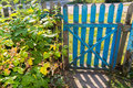 Wooden Gate In  Garden Royalty Free Stock Image - 45383866