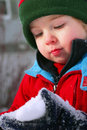 First Snow Stock Images - 4545784