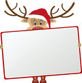Reindeer Holding Blank Sign Royalty Free Stock Photo - 45412075
