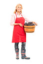 Mature Lady Holding A Bucket Full Of Grapes Royalty Free Stock Image - 45414166