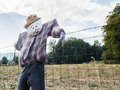 Scarecrow On Farm Fence Stock Images - 45438754