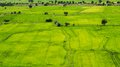 Aerial View Of A Green Rural Area Royalty Free Stock Photography - 45490747