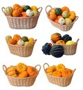 Mini Pumpkins And Gourd In Bucket Royalty Free Stock Images - 45504129