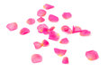 Rose Petals Stock Images - 45520074