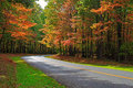 Autumn Forest Road Royalty Free Stock Photography - 45526757