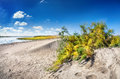 Dune Near The Lake Royalty Free Stock Images - 45632339