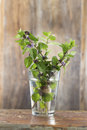 Bunch Of Fresh Mint In A Glass Of Water Stock Photos - 45726073