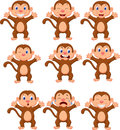 Cute Monkeys In Various Expression Royalty Free Stock Photography - 45727227