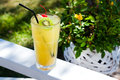 Tropical Cocktail With Kiwi And Cherry Royalty Free Stock Images - 45830439
