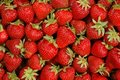 Strawberries Royalty Free Stock Photography - 4592247
