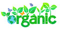 Organic World Earth - Go Green Stock Image - 45915981