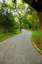Stone Lined Path Stock Photography - 45938322