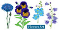 Set Of Blue Wild Flowers On A White Background, Vector. Stock Photography - 45938582