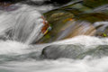 River Water Moving Stock Photo - 45948960