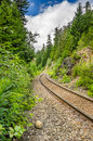 Curving Railway Through A Forest Royalty Free Stock Photography - 45955057